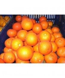 Naranja Zumo 1kg