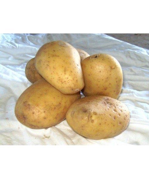 Patata Amarilla 25kg