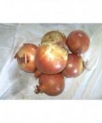 Cebolla Calibre Grande 1kg