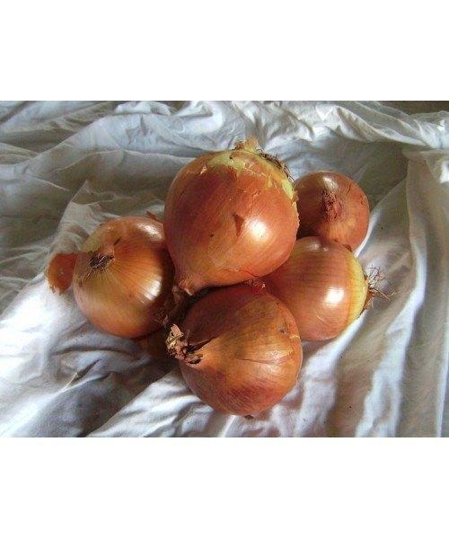 Cebolla Calibre Pequeño 1kg