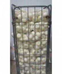 Cebolla Entera Pelada 5kg