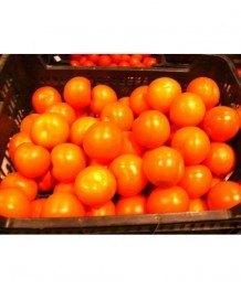 Tomate Bola 1kg