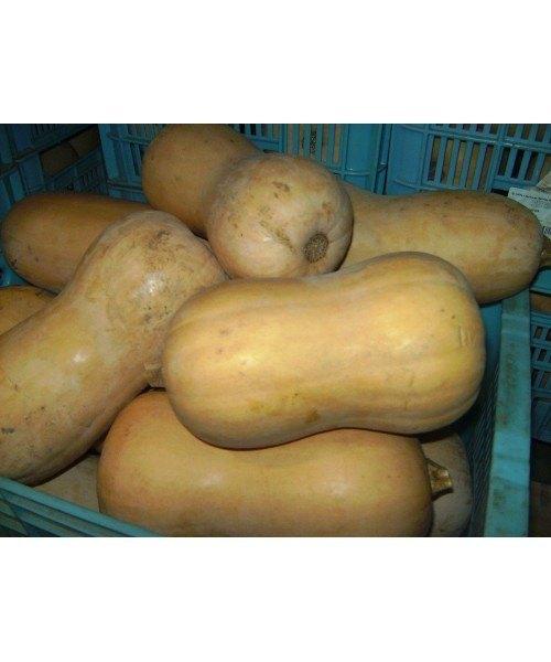 Calabaza 0,5kg
