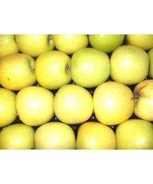 Manzana Golden 1kg