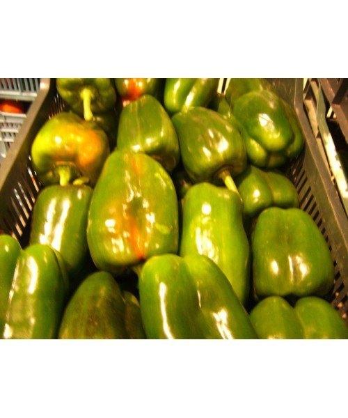 Pimiento Verde lamuyo 0,5kg
