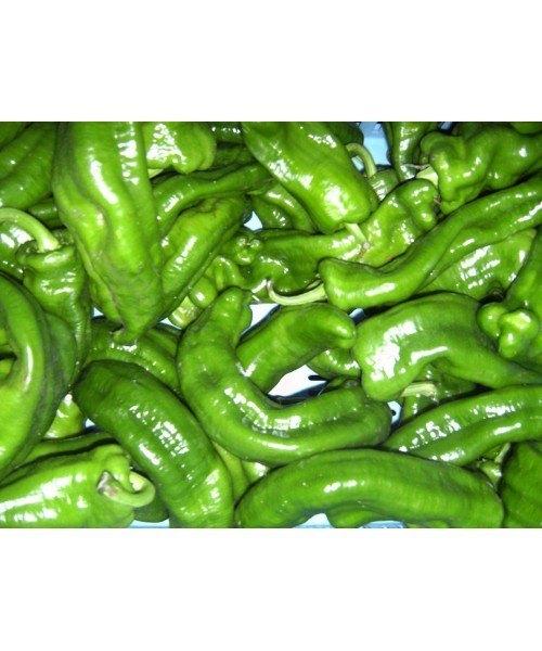 Pimiento Verde Italiano 0,5kg