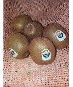 Kiwi Pulpa Verde 1kg